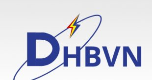 DHBVN invites applications for empanelment of Revenue audit (Last date: June 1, 2020)